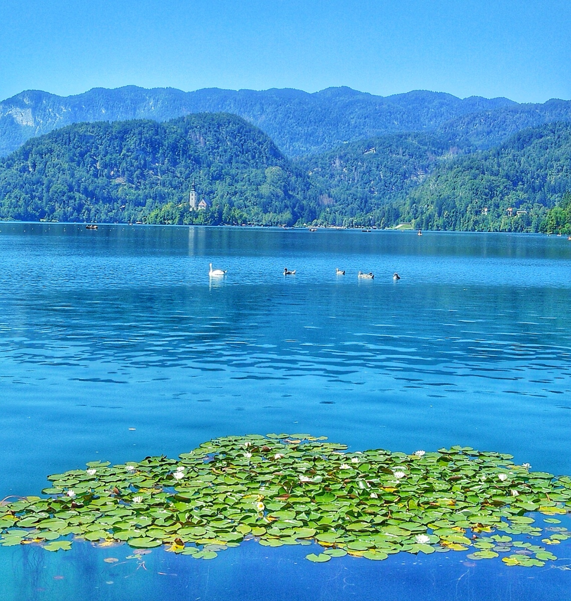 Beautiful Lake House Homes: Things To Do In Ljubljana & The Beautiful Lake Bled